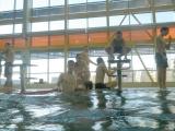 V bazenu