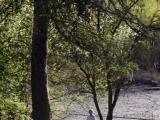 Rybník byl jako už tradičně prázdný