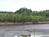 Kozel se vydava do rybnika